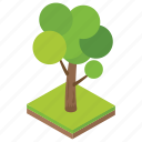 forest, fruit tree, garden, nature, tree icon