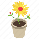 decorative pot, flowery plant, gardening, house plant, pot plant icon