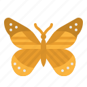 animals, butterfly, flower, insect, moths icon