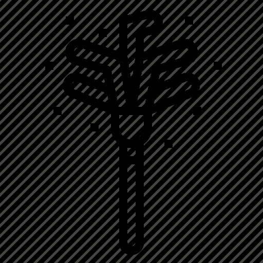 broom, duster icon