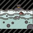 ocean, acidification, pollution, environment, problem