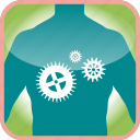body, cogs, gear, in, the, tools, work icon