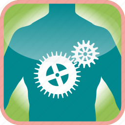 body, cogs, in, technical, the, tools, work icon