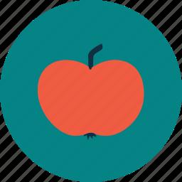 apple, education, gift, school, study icon