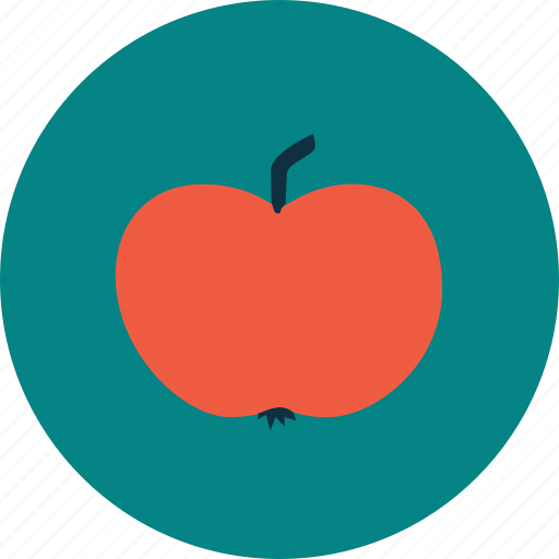 apple, education, gift, school, study icon