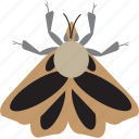 art, bug, bugs, color, graphic, insect, moth icon