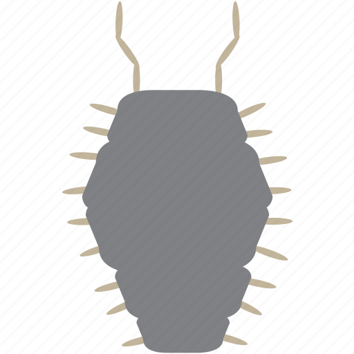 art, bug, bugs, color, graphic, insect, pillbug icon