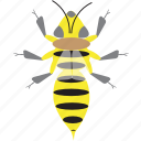 art, bee, bug, bugs, color, graphic, insect icon