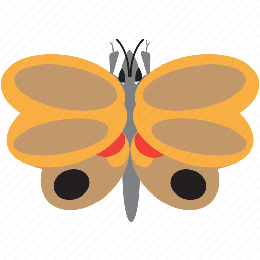 art, bug, bugs, buterfly, color, graphic, insect icon