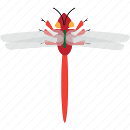 art, bug, bugs, color, dragonfly, graphic, insect icon