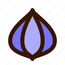 food, onion icon