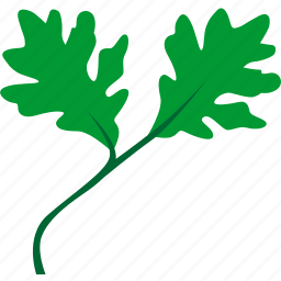 eco, garden, grow, leaf, oak, plant, tree icon