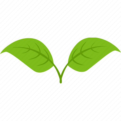 Dual, green, leaf, plant, tea icon - Download on Iconfinder