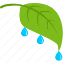 green, leaf, plant, rain, tea icon