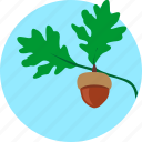 grow, leaf, oak, plant, sky, tree icon
