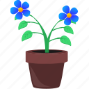flower, grow, home, plant, pot icon