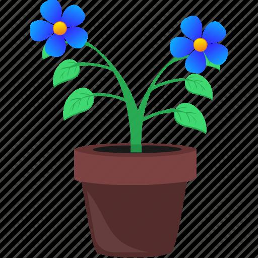 flower, grow, home, plant, pot icon