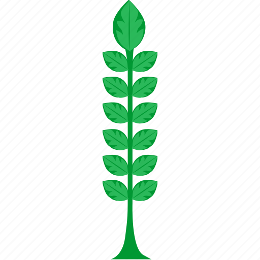 eco, grow, harvest, natural, plant, product, wheat icon
