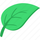 plant, leaf, eco, tea, product, green, natural