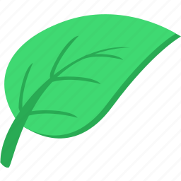 eco, green, leaf, natural, plant, product, tea icon