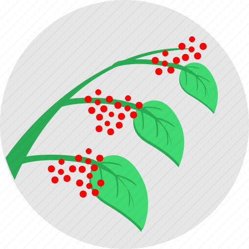 berries, branch, eco, fruit, green, plant, red icon
