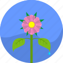 eco, garden, natural, plant, rose icon