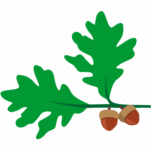 branch, grow, nut, oak, plant, tree icon