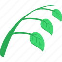 branch, eco, green, leaf, natural, plant, tea