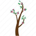plant, flowers, tree, branch, nature