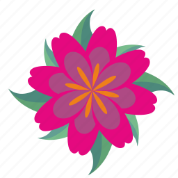 astra, bud, complex, flower, plant icon