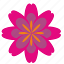 flower, nature, plant, rowan icon