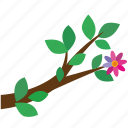 leaves, flower, tree, branch