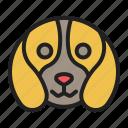 beagle, dog, hound, hunting, scent icon