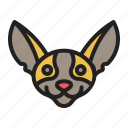breed, chihuahua, dog, pet, smallest icon