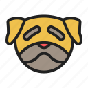 dog, face, pet, pug, wrinkly icon