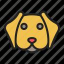 breed, dog, face, pet, retriever icon
