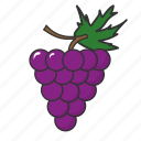 food, fruit, grapes, summer fruit icon