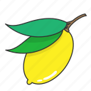 food, fruit, lemon, summer fruit icon