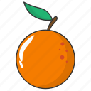 food, fruit, orange, winter fruit icon