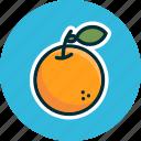 diet, food, fruit, fruits, naranja, orange icon
