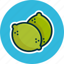 diet, food, fruits, lemonade, lime, limon icon