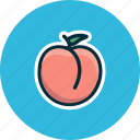 apricot, diet, food, fruits, peach icon