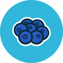 berries, blueberry, diet, food, fruits icon