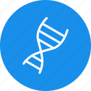 biometric, data, dna, matching icon