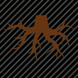 foundation, nature, root, roots, stump, tree, tree stump icon
