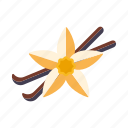 flower, food, ingredients, pod, seasoning, spices, vanilla icon