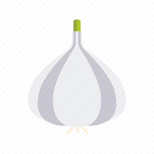 bulb, condiment, food, garlic, ingredients, seasoning, spices icon