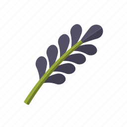 blossom, condiment, food, herb, ingredients, lavender, seasoning icon