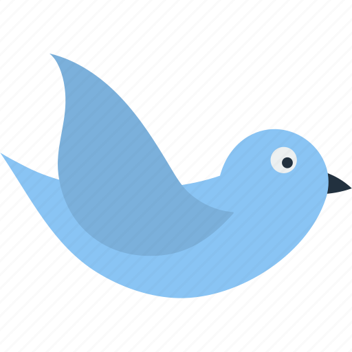 bird, business, communication, dove, information, message, technology icon