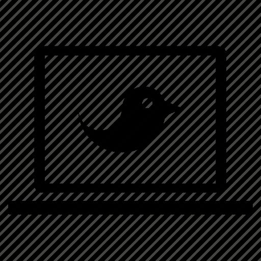 bird, communication, computer, laptop, technology, tweet, twitter icon